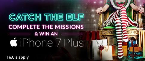 Catch the Elf!